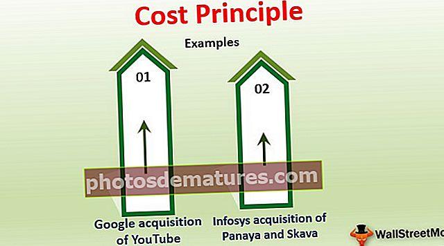 Principi de costos