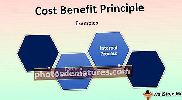 Principi de Cost Benefici