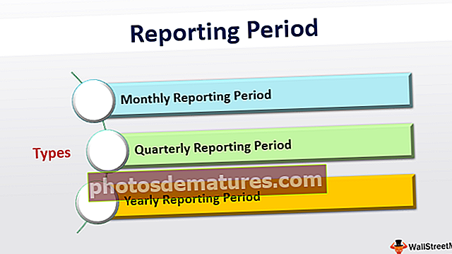 Període d'informe