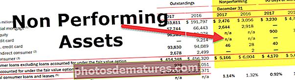 Actius no productius (NPA)