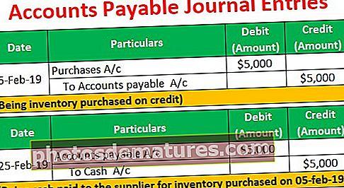 Entrades del diari de comptes a pagar