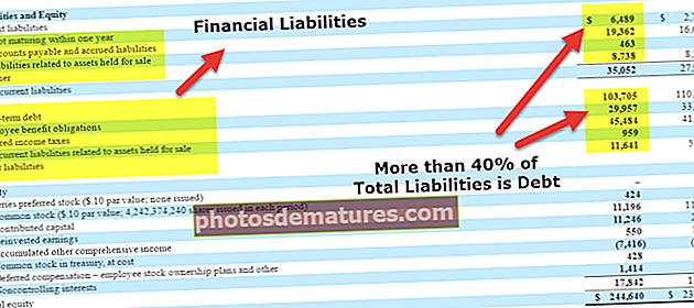 Passius financers | Definició, tipus, ràtios, exemples