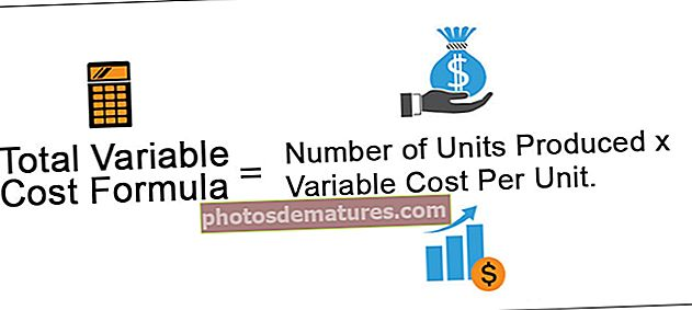 Cost variable total