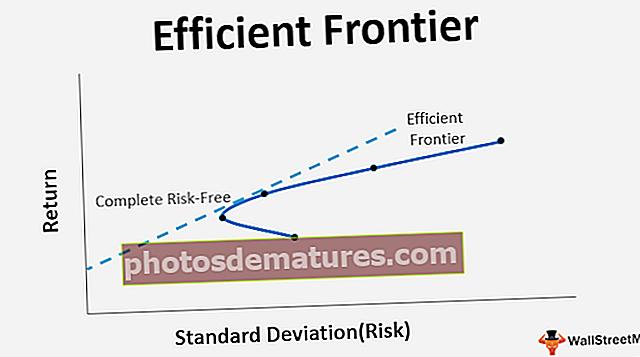 Frontera eficient