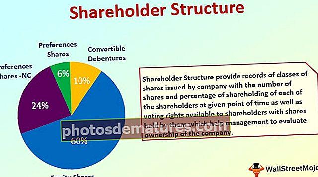 Estructura accionista