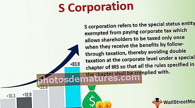 S Corporation (S Corp)