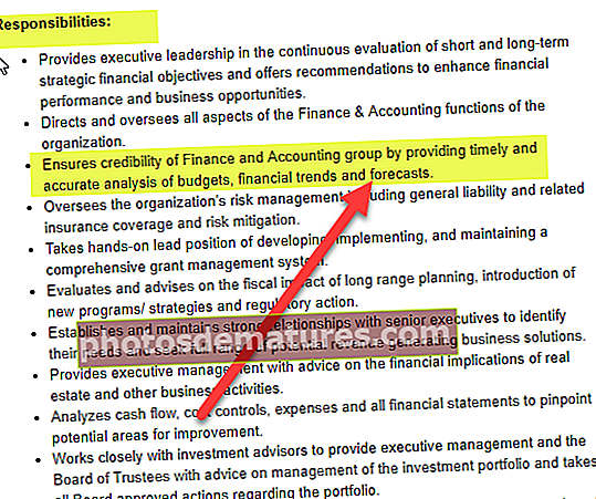 Descripció del lloc de treball de CFO
