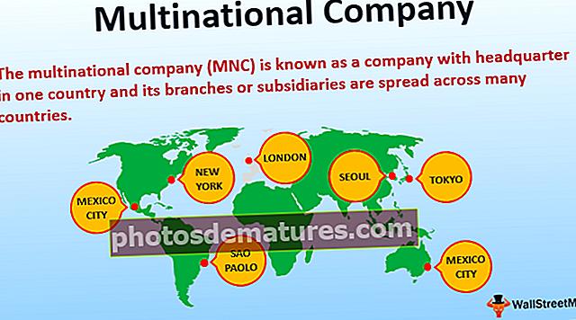 Companyia multinacional