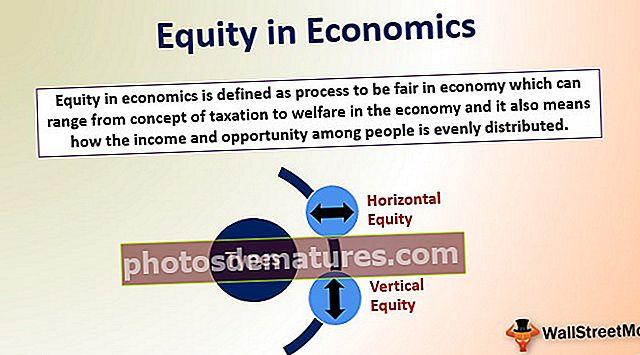 Equitat en Economia