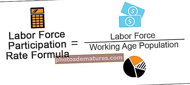 Fórmula de taxa de participació de la població activa