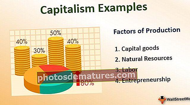 Exemples de capitalisme