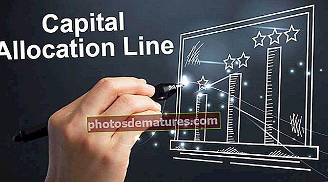 Línia d'assignació de capital
