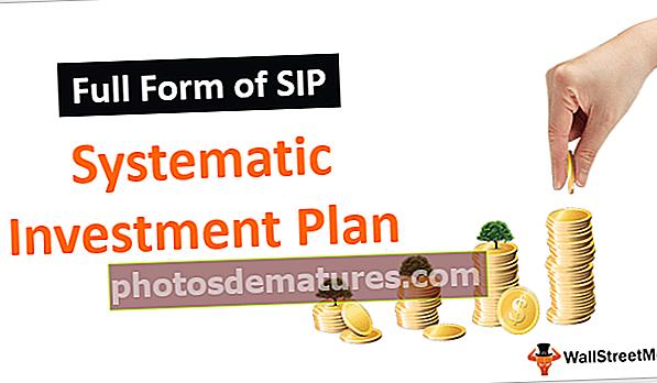 Formulari complet de SIP