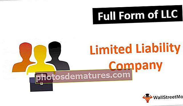 Formulari complet de LLC