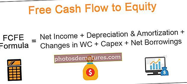 FCFE (Free Cash Flow to Equity)