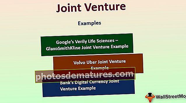 Joint Venture (JV)