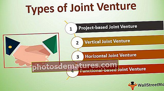 Tipus de Joint Venture