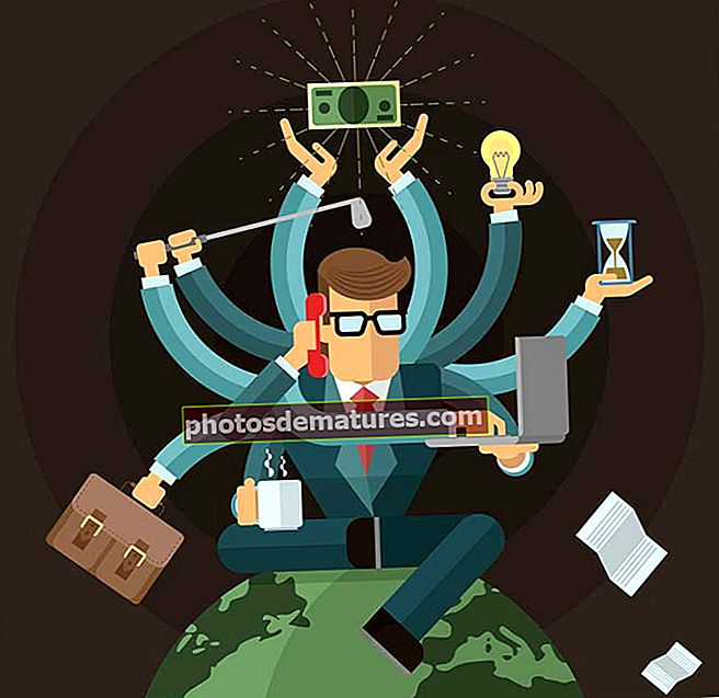 Salari de l'analista quantitatiu | Habilitats | Tendències | Els millors empresaris