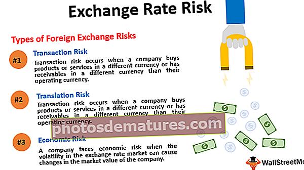 Ризик девизног курса